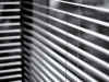 Behind the Blinds by Kirsti Holtan